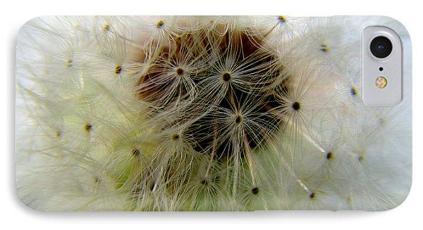 Heart Of The Dandilion IPhone Case