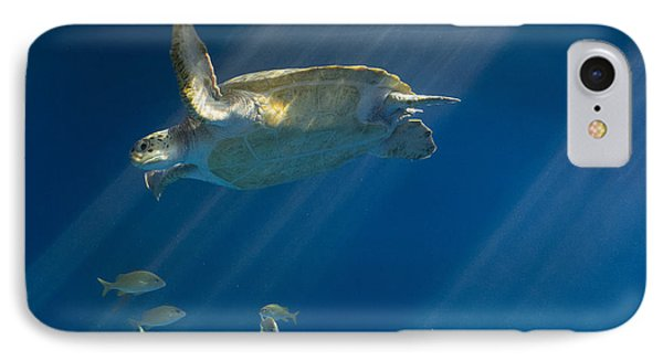 Heavenly Turtle IPhone Case