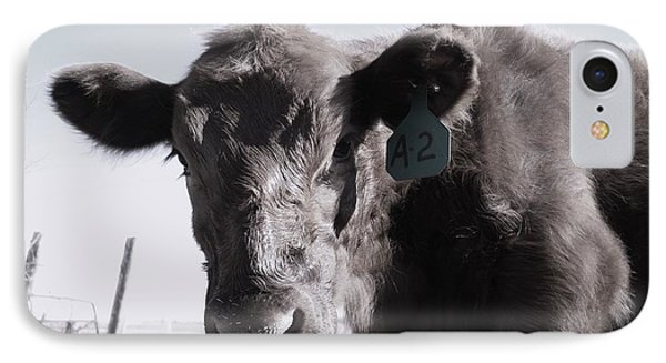 Heifer IPhone Case