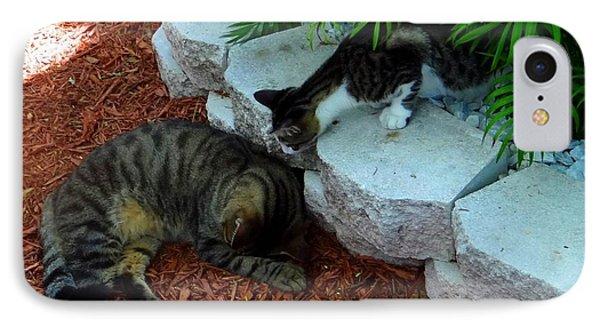 Hemingway Cats IPhone Case