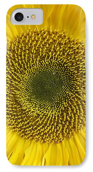 Here Comes The Sun.... IPhone Case