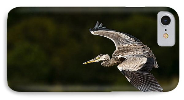 Heron Coming In To Land IPhone Case