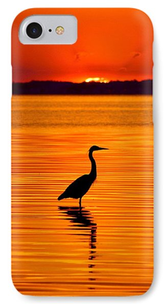 Heron With Burnt Sienna Sunset IPhone Case