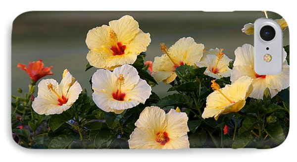 Hibiscus Convention All Profits Go To Hospice Of The Calumet Area IPhone Case