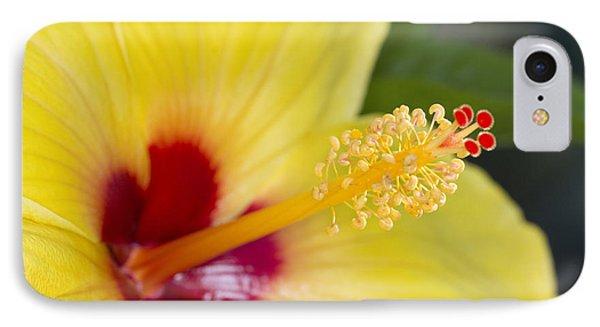 Hibiscus Macro IPhone Case