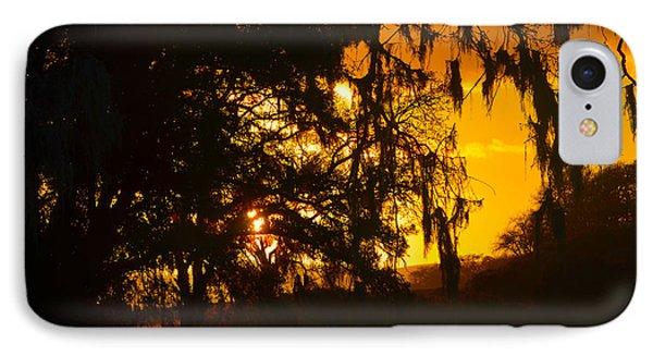 Hidden Valley Ranch IPhone Case
