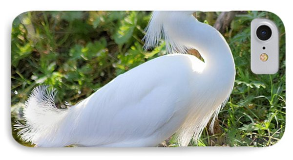 High Stepping Egret 1 IPhone Case
