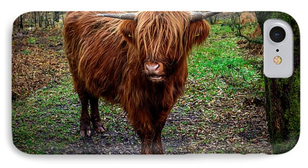 Highland Beast  IPhone Case
