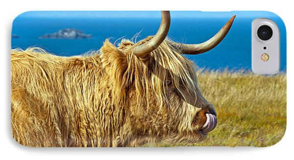 Highland Beauty IPhone Case