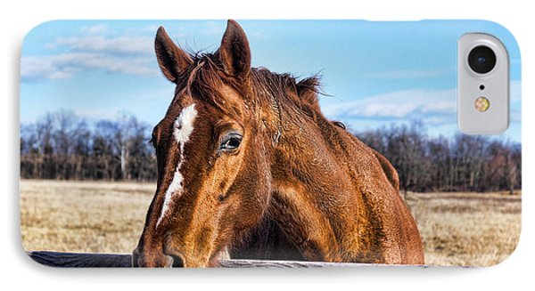 Horse Country IPhone Case