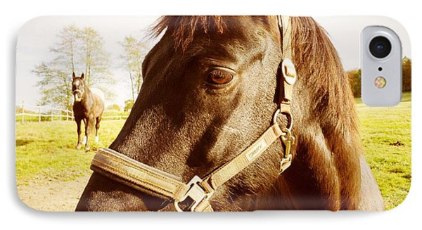Horse Portrait IPhone Case