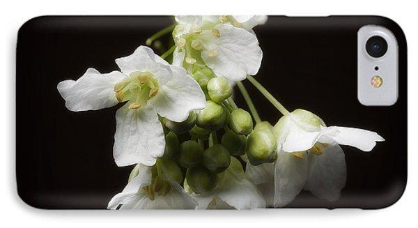 Horseradish Bloom IPhone Case