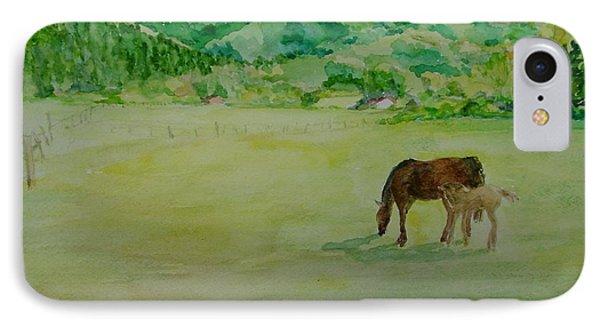 Horses Mare Foal Pastures Rural Landscape Original Art Oregon Western Artist K. Joann Russell IPhone Case