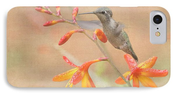 Hovering In The Crocosmia IPhone Case