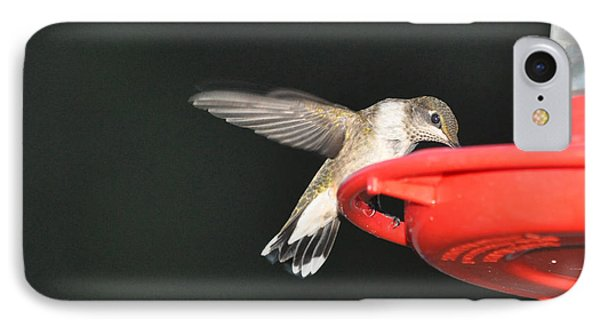 Hummingbird Drinking IPhone Case