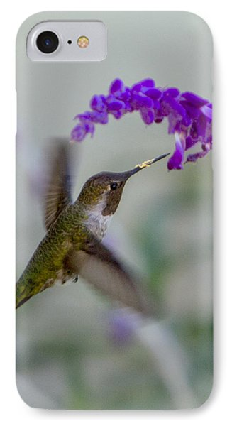 Hummingbird Series 01 IPhone Case