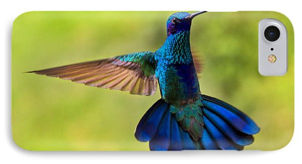 Hummingbird Splendour IPhone Case