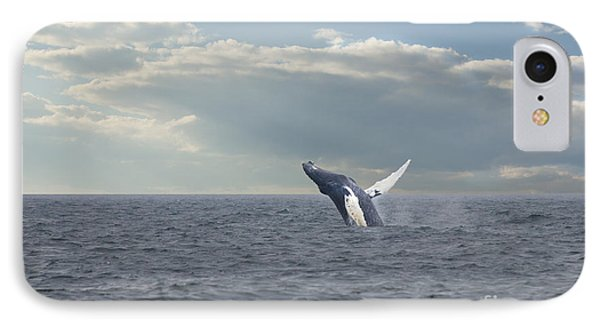 Humpback Whale Breaching IPhone Case