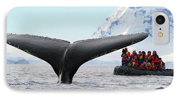 Humpback Whale Fluke  IPhone Case