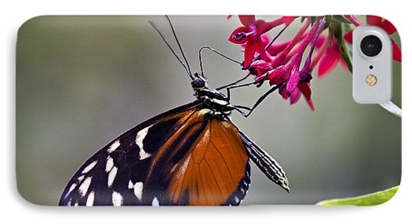Hungry Butterfly IPhone Case