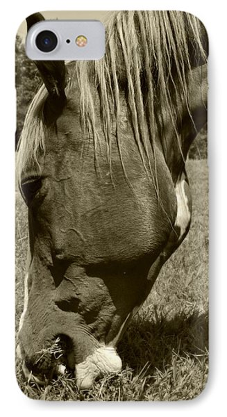 Hungry Horse IPhone Case