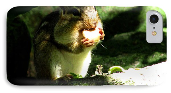 Hungry Hungry Chipmunk IPhone Case