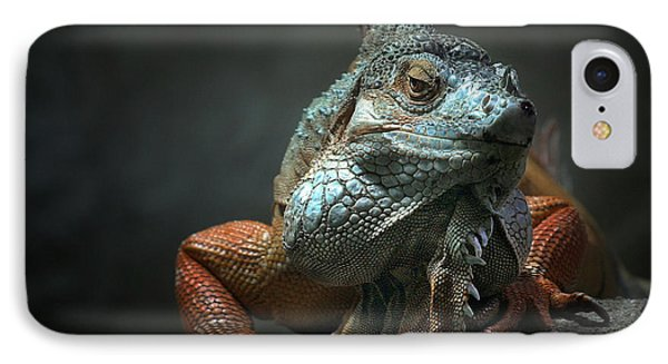 Dragon iPhone 8 Case - I Am The King ,.. Who Else ! by Holger Droste