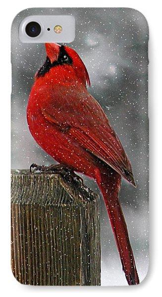 I Love Snow..... IPhone Case