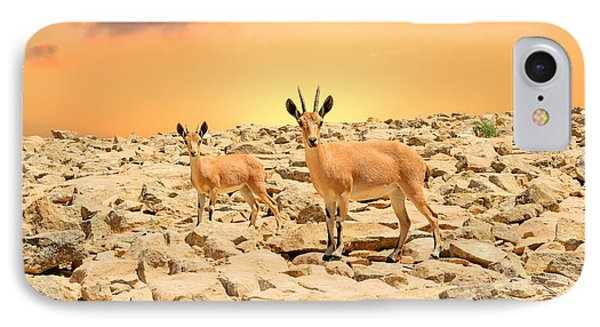 Ibexes And Sunset IPhone Case