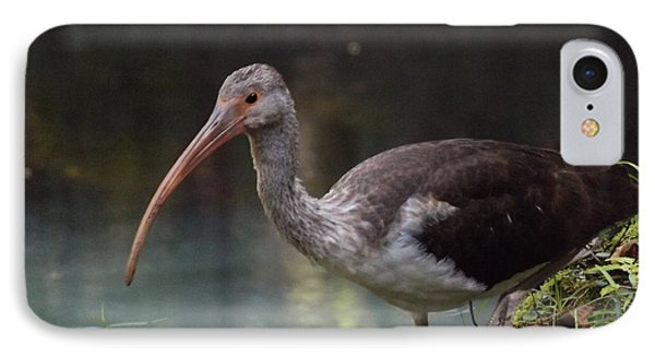 Ibis Cute Face IPhone Case