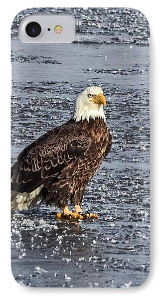 Ice Eagle IPhone Case