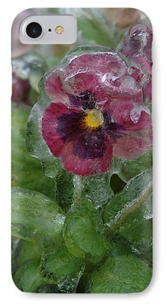 Iced Purple Pansy IPhone Case