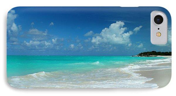 Iguana Island Caribbean IPhone Case