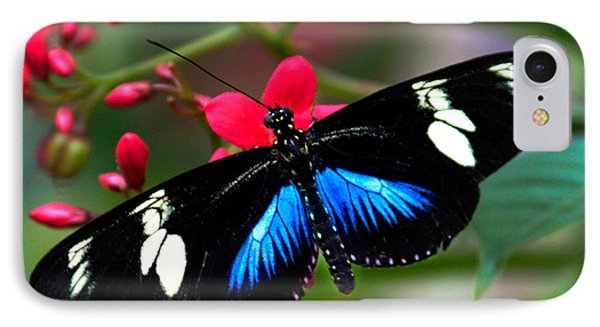 Imperfect Beauty In Black And Blue On Red IPhone Case