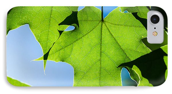 In The Cooling Shade - Featured 3 IPhone Case