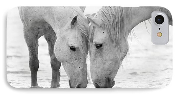 Horse iPhone 8 Case - In The Water At Dawn II by Carol Walker