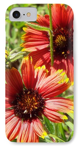 Indian Blankets IPhone Case