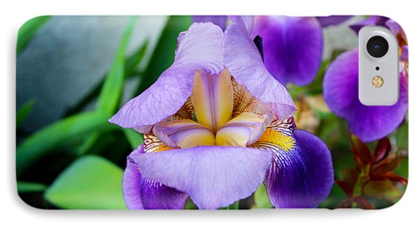 Iris From The Garden IPhone Case