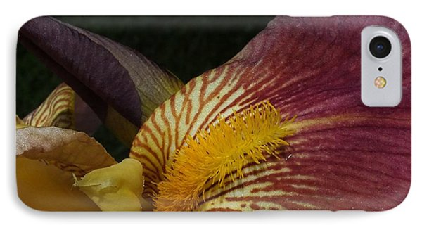 IPhone Case featuring the photograph Iris In Pink And Yellow by Gene Cyr