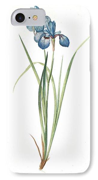 Iris Pratensis, Iris De Prés, Redouté, Pierre Joseph IPhone Case