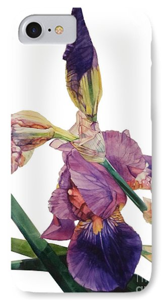 Watercolor Of A Tall Bearded Iris In A Color Rhapsody IPhone Case