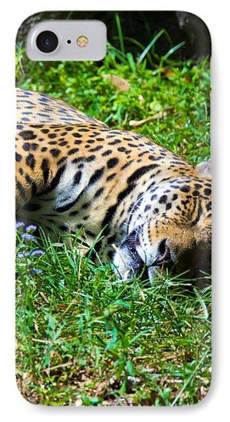 Jaguar's Slumber IPhone Case
