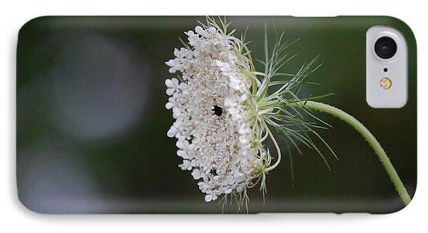 jammer Garden Lace 2 IPhone Case