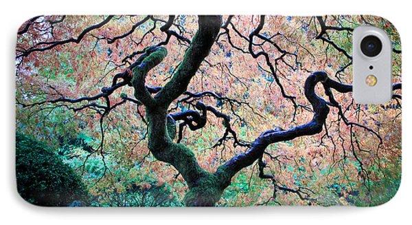 Japanese Maple In Autumn IPhone Case