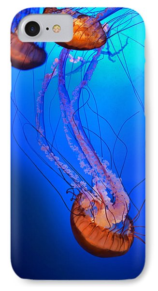 Jelly #1 IPhone Case