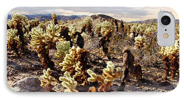 Joshua Tree National Park 3 IPhone Case