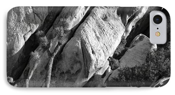 Joshua Tree Nevada IPhone Case