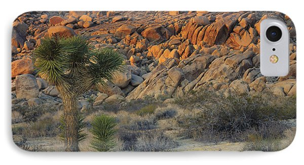 Joshua Tree With Offsrping IPhone Case