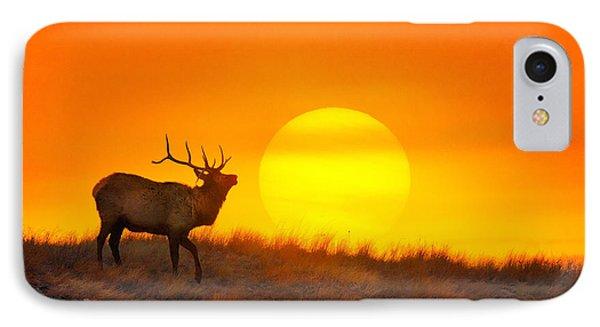 Kiss The Sun IPhone Case