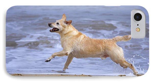 Labrador Cross Dog Running IPhone Case